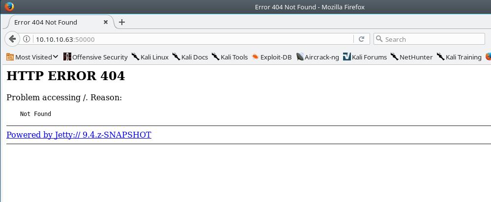 Jetty Error Page